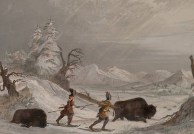 Seth Eastman's Hunting Buffalo in Winter